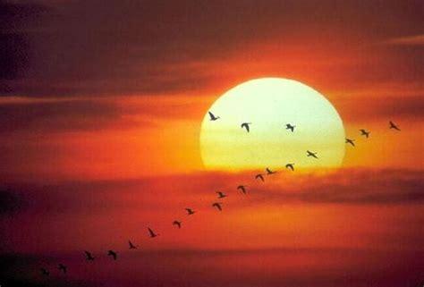 imagenes extrañas del sol las fotos mas sorprendentes y raras taringa