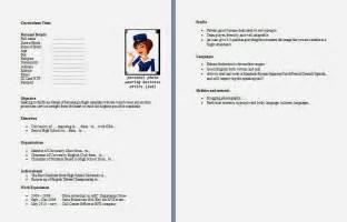 contoh curriculum vitae international curriculum vitae design bild