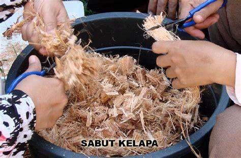 Pot Anggrek Sabut Kelapa media tananm anggrek serabut kelapa orchidindo