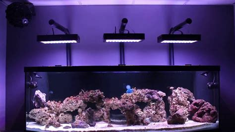 Lu Led Aquarium Diy diy led reef lighting kits lighting ideas