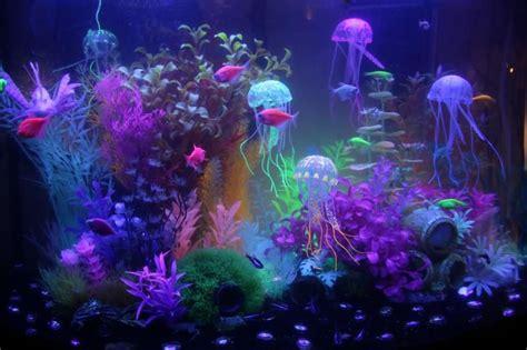 Neon Aquarium Decorations by Chasing Glofish Advice Aquarium Advice Aquarium Forum