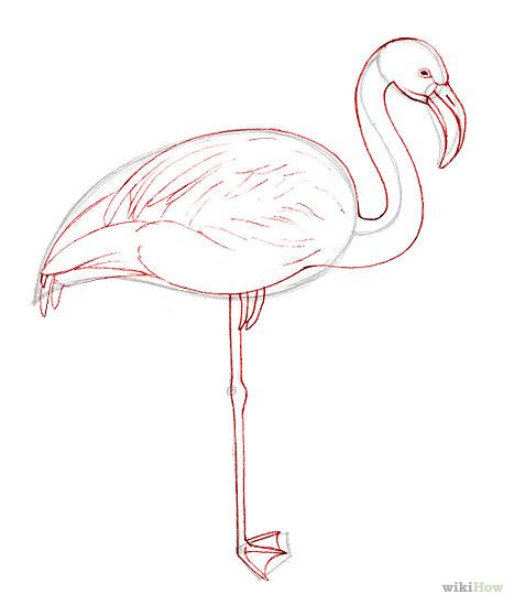 how to draw a flamingo stuff i want to make pinterest
