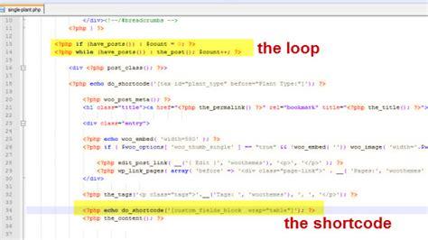 shortcode in template shortcode in template 28 images shortcode in template