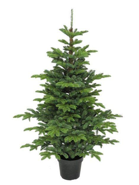 3ft hton spruce potted feel real artificial christmas tree 5ft potted pine 100 feel real artificial tree ideas