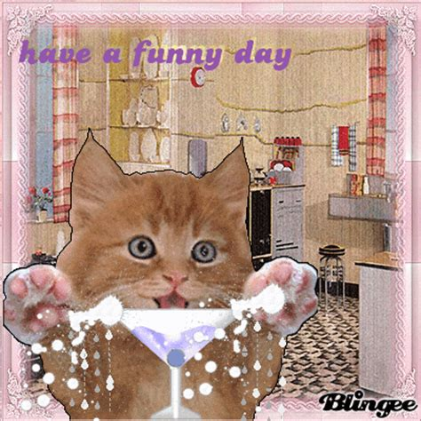funny day picture  blingeecom