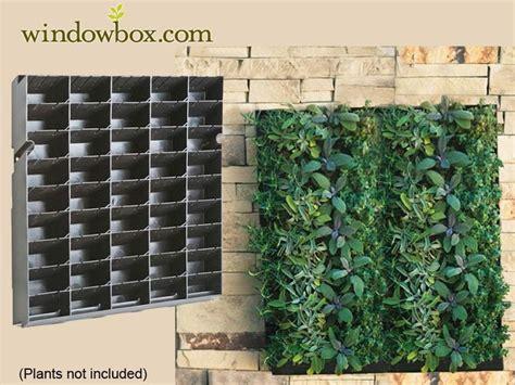 wall garden pots 25 best ideas about living wall planter on garden wall planter succulent wall diy