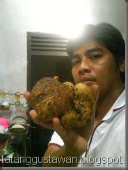 kisi kisi hati resep masakan langka tapi maknyos jamur