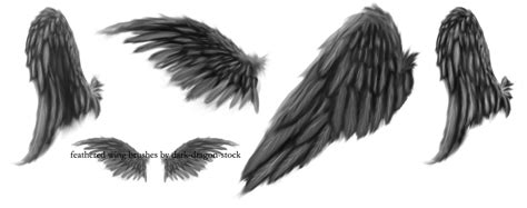 wings png by dark dragon stock on deviantart