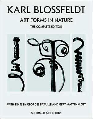 libro karl blossfeldt alphabet of karl blossfeldt art forms in nature by georges bataille gert mattenklott hardcover barnes