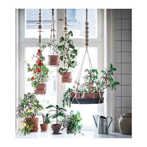 foto vasi sospesi  piante da appendere