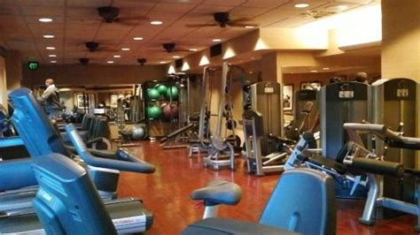animal house gym gym picture of disney s animal kingdom lodge orlando