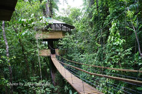 costa rica tree house costa rica s finca bellavista treehouse community is 100 percent sustainable off the