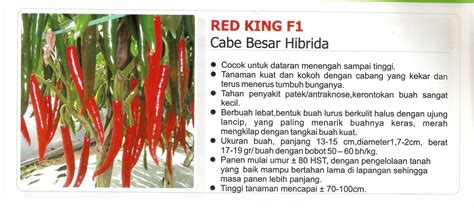 Cabe Besar the interesting of just another weblog