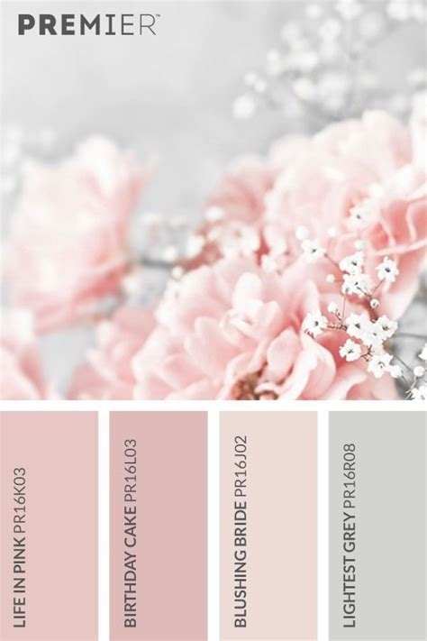 blushing pink color best 25 pink color palettes ideas on