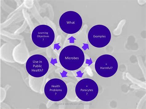 Mikrobiologi Parasitologi pengantar mikrobiologi parasitologi
