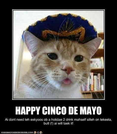 Memes 5 De Mayo - hah pee see ink oh day my oh lol and grumpy cats