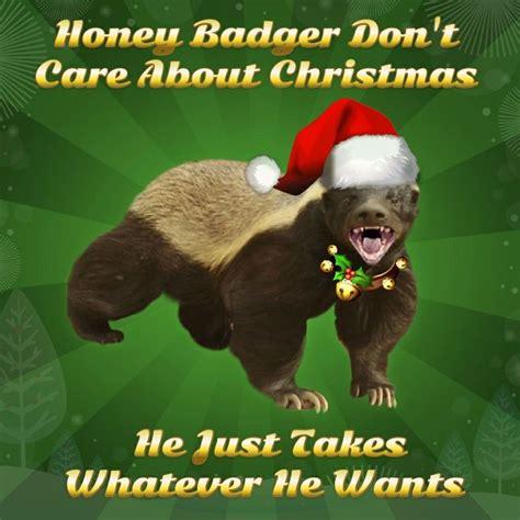 fearlesscute honey badger images  pinterest honey badger cubs  happy holidays