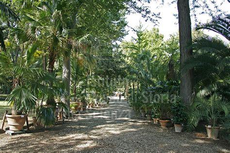giardino dei semplici firenze immagine orto botanico quot giardino dei semplici quot firenze vi