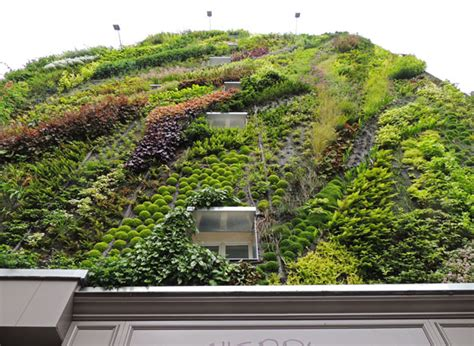 in a vertical garden makes the city greener