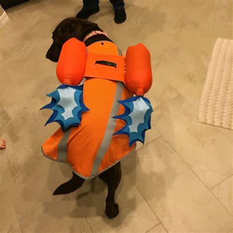Zoema Dress I 25 best ideas about paw patrol costume on paw