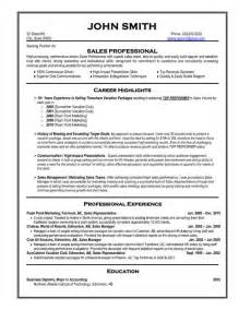 It Professional Resume Exles by Sales Professional Resume Template Premium Resume Sles Exle