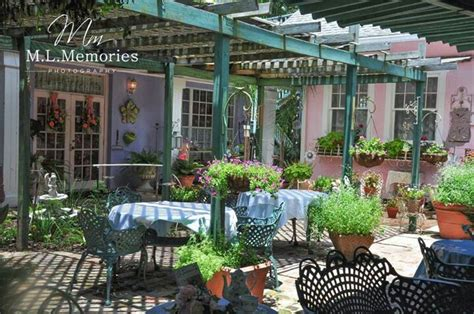 lavender and lace tea room lavender and lace tea room us places cities states traveled pinte