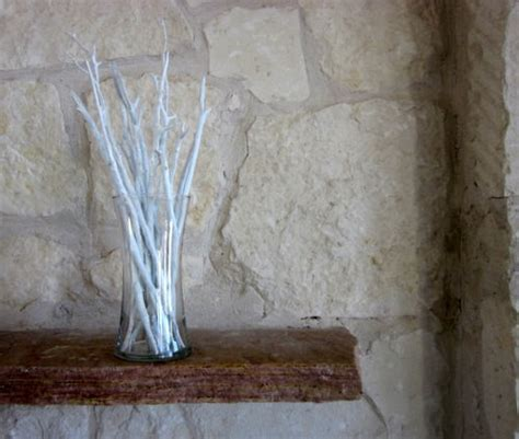 Decorative Twigs For Vases by White Vase Filler Decorative White Wash Branches By