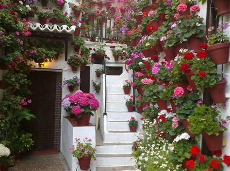imagenes de jardines con geranios c 243 mo cuidar geranios pisos al d 237 a pisos com