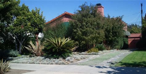home front design build los angeles xeriscape landscaping los angeles ca photo gallery
