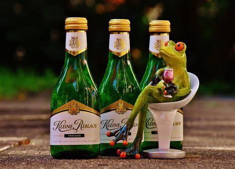 the chemistry of wine from blossom to beverage and beyond books foto茵raf tatl莖 231 i 231 ek restoran sevimli ye蝓il i 231 ki