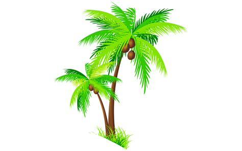 Coconut Tree 19 free shocking coconut clipart fruit names a z with