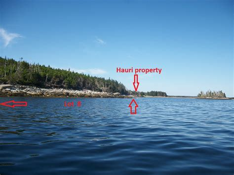 Scotia Property Records Hemlow Island 14 35 Acre Property In Scotia Lot 8 Shore Side Properties