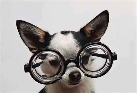 eyeglass cleaner money saving tip