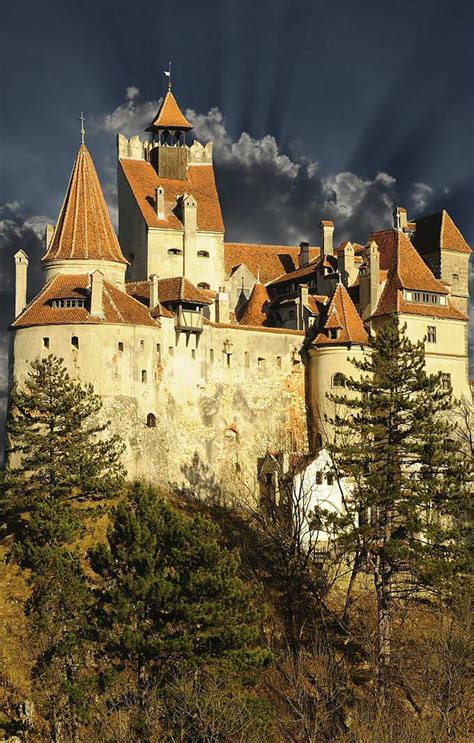bran castle for sale dracula s bran castle in transylvania on sale extravaganzi