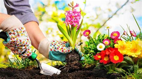 App Per Creare Giardini by Smartphone E App Come La Tecnologia Migliora Il