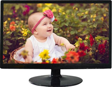 Monitor Lcd Skyview skyview skv19lh 19 inch usb led lcd monitor with tv tuner