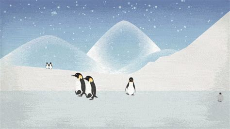 gif wallpaper winter pin penguin winter snow tree clouds animals free hd
