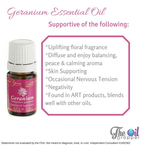 Yl Geranium Eo 15 Ml living geranium essential 15ml 11street