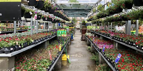 home depot sustainable garden  rainwater