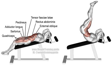 incline bench reverse crunches incline straight leg and hip raise guide and video