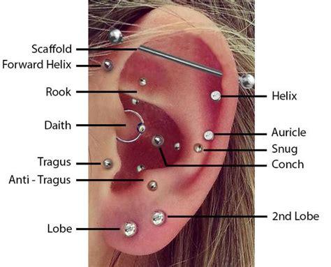 tattoo pain vs nipple piercing pain top ear piercings bmg body jewellery