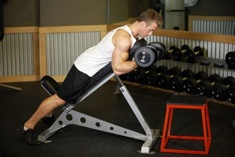 incline bench bicep curls dumbbell prone incline curl exercise guide and video