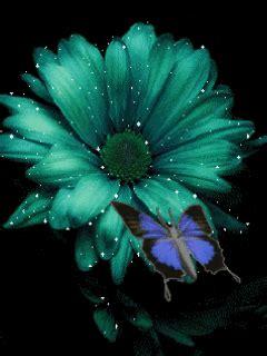 imagenes de mariposas animadas con movimiento imagenes de mariposa con movimiento y brillo buscar con