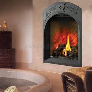 the park avenue direct vent gas fireplace from napoleon