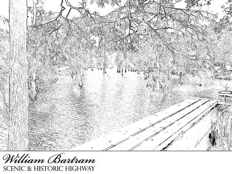 coloring pages for adults scenery william bartram scenic and historic highway coloring page