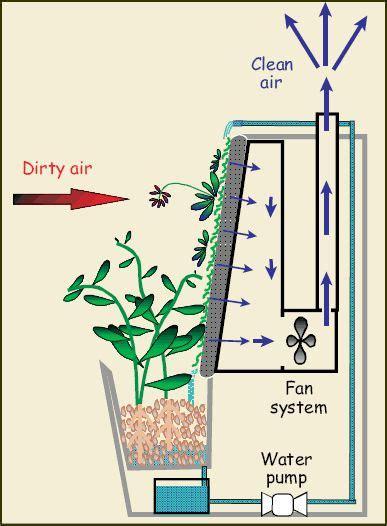 shit    pump vertical garden garden wall aquaponics