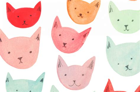 wallpaper tumblr png tag for cats background tumblr cats collage tumblr cat