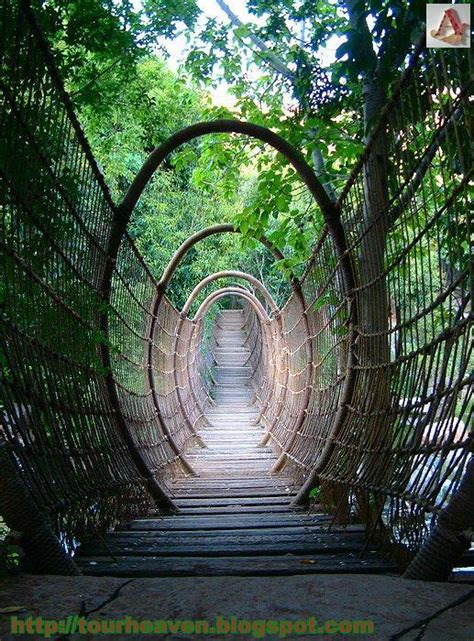 swinging heaven south africa amazing spider bridge in sun city resort south africa