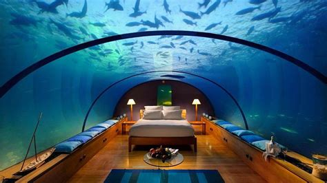 underwater bedroom in maldives underwater restaurants undersea dining world first