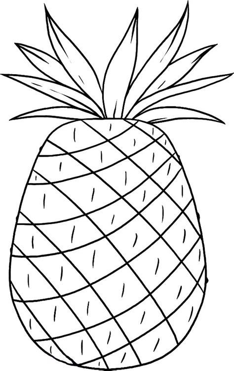 pineapple coloring sheet from hawaii page print online